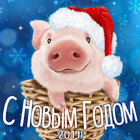 Официальные поздравления с Новым годом 2019 в прозе и своими словами. Поздравления с годом Желтой Свиньи (Кабана) прикольные для коллег на корпоратив