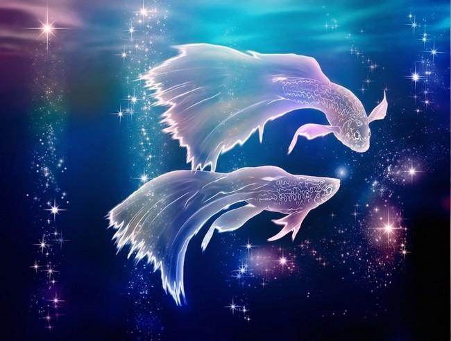 Рыбы прогноз астролога на 2019 год: гороскоп на 2019 год для Рыб, точный прогноз, карьера, отношения
