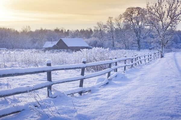 Все праздники 29 декабря 2018 в России и мире, церковный, народный праздник 29.12.2018, по православному календарю