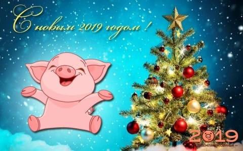 Картинки, гифки на Новый год 2019: красивые открытки, изображения – прикольные поздравления