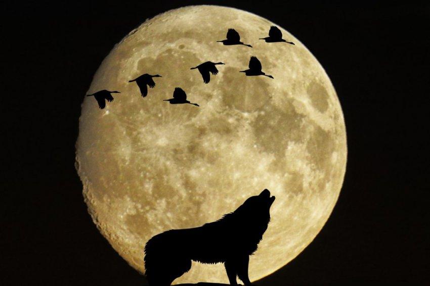 Лунный календарь сегодня. Луна 17 декабря 2018 — растущая или убывающая луна, какая фаза сегодня