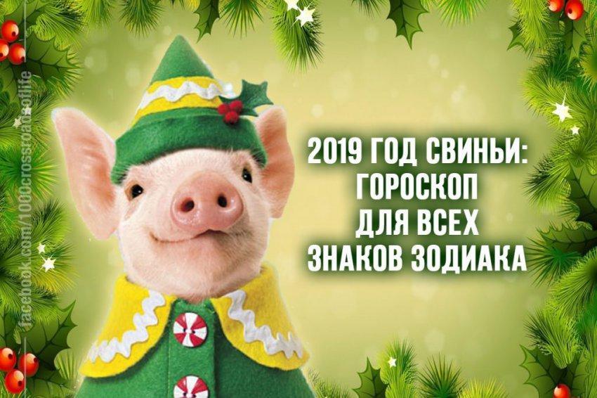 Гороскоп для всех знаков по годам рождения на Год Свиньи 2019