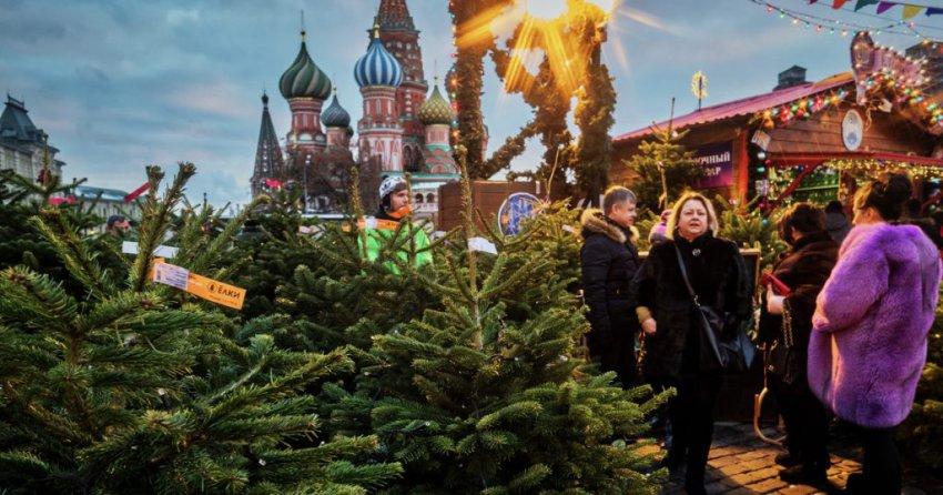 Елочные базары в Москве в 2018-2019 году: адреса