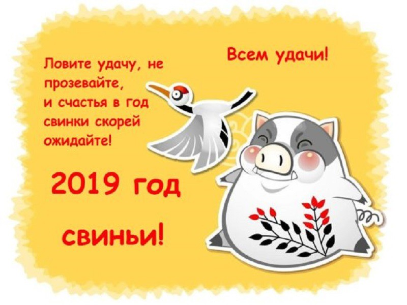 Шуточные новогодние поздравления пожелания на 2019 год