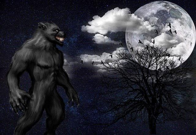 Во время Кровавой луны семья из Калифорнии увидела оборотня