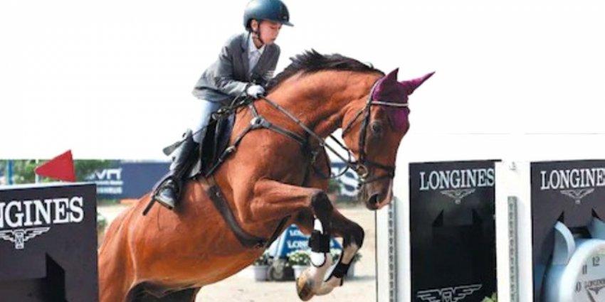 В Китае стремительно растет популярность конного спорта