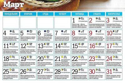 Составлен лунный календарь для садоводов и огородников на март