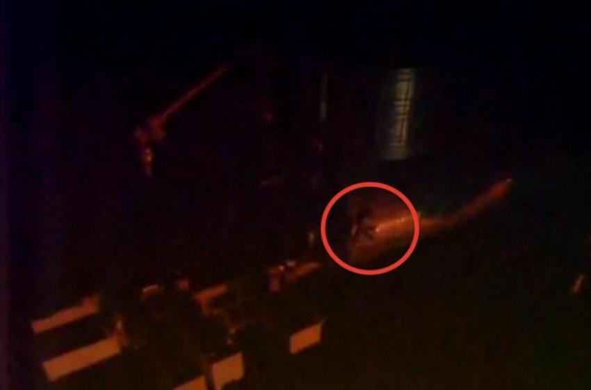 Камера сняла неизвестное существо на борту МКС