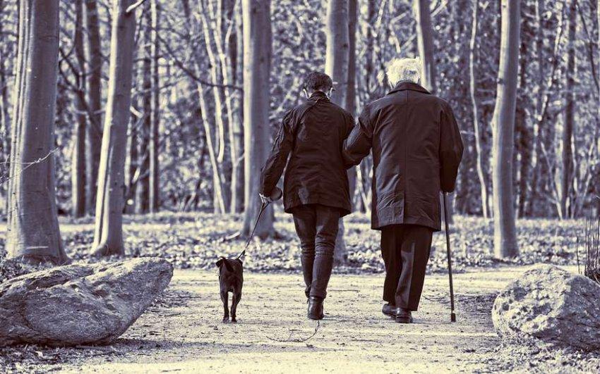 Кто имеет право на двойную пенсию рассказали в ПФР