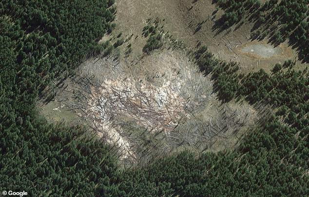 Йеллоустонский вулкан расширяется и уничтожает деревья в парке - НЛО, инопланетяне, мистика, тайны, загадки, монстры, чупакабра, последние новости, фото и видео