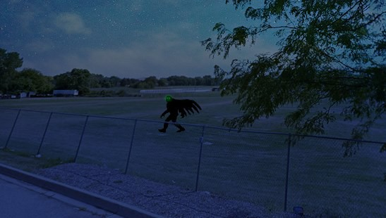 Мужчина позвонил по номеру 911 и рассказал, что увидел крылатое чудовище - НЛО, инопланетяне, мистика, тайны, загадки, монстры, чупакабра, последние новости, фото и видео