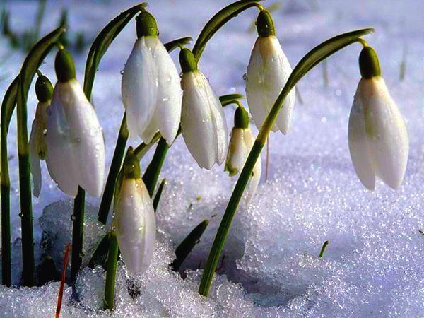 Календарь. День в истории: 15 апреля – праздники, события, именины