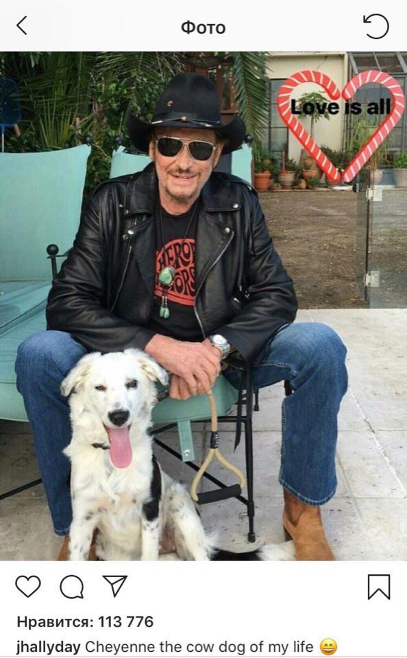 Ценные вещи рок-исполнителя Джонни Холлидея продадут на аукционе во Франции