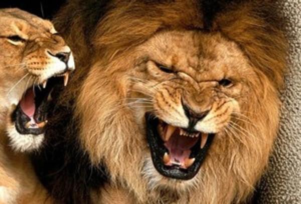 Шесть причин, по которым девушкам опасно влюбляться в Львов