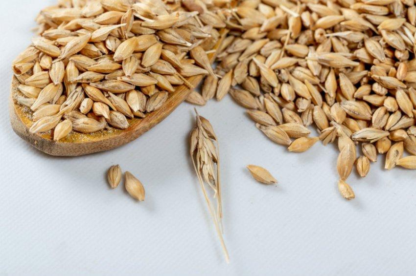 Цельнозерновая диета снизит риски рака печени