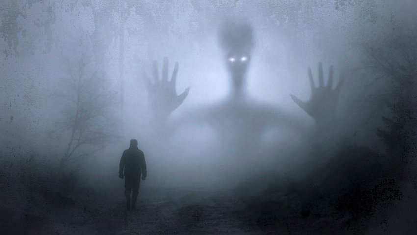 Светящиеся зеленые глаза и крылья: мужчина встретил жуткое двухметровое чудовище