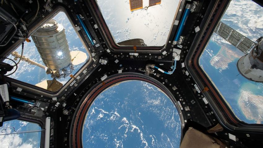 МКС кишит бактериями и грибками, способными разъедать космические корабли