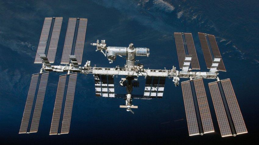 Мыши на борту МКС начали бегать по кругу