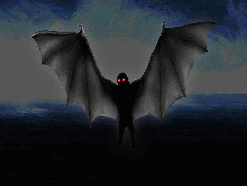«Охотник за привидениями» встретил «детеныша» Человека-мотылька