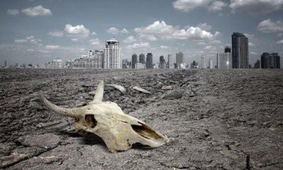 Ученые прогнозируют вымирание 1 млн видов живых существ к 2050 году