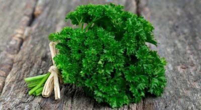 Врачи назвали 5 самых полезных видов зелени