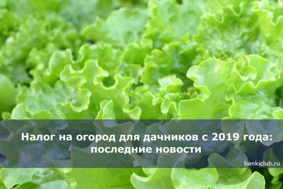 Налог на огород для дачников с 2019 года: последние новости