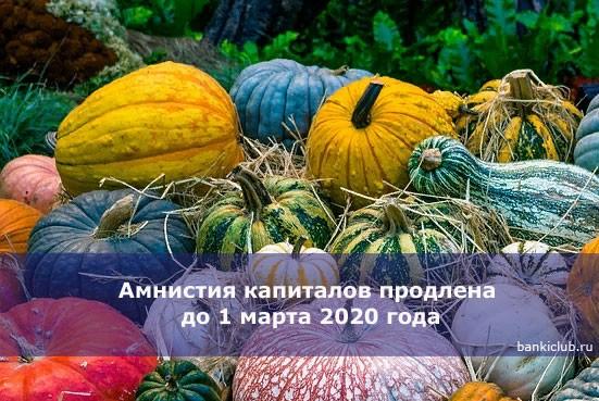 Амнистия капиталов продлена до 1 марта 2020 года