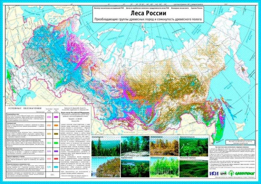 Российские леса хранят большие тайны