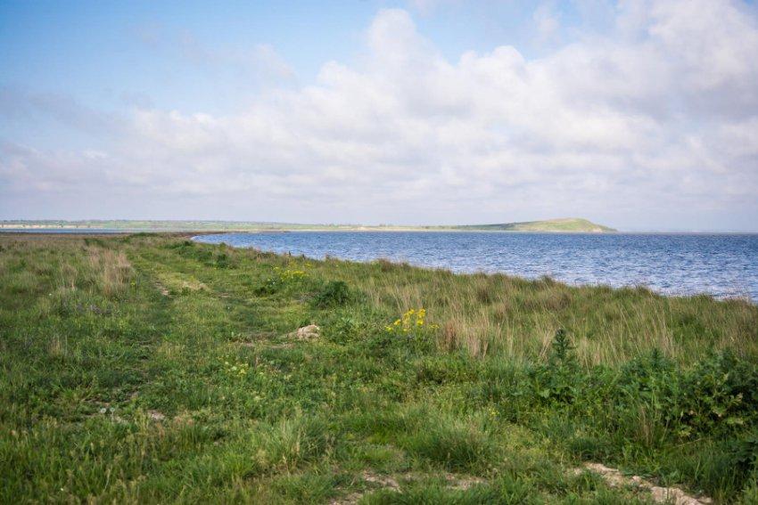 Жителей прибрежного района Краснодарского края привлекут к уголовной ответственности за браконьерство