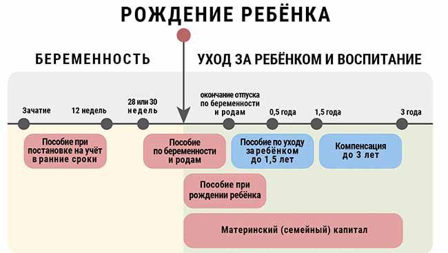 Как рассчитать декретные выплаты в 2020 году в России?