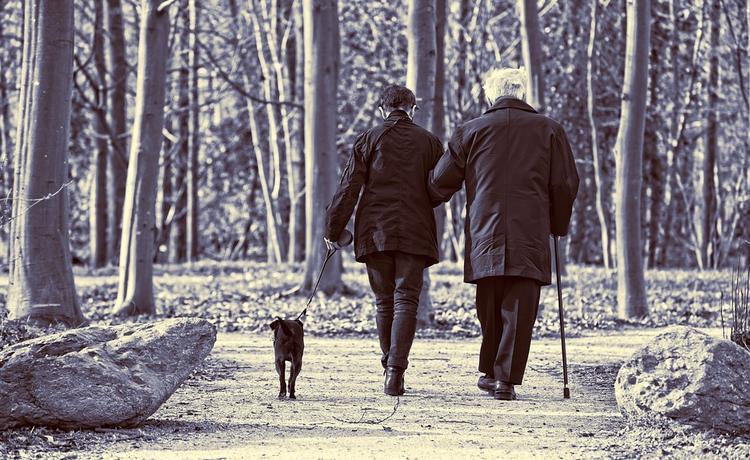 В России резко сократилось число работающих пенсионеров