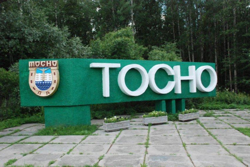 Житель Тосненского района осужден за изготовление наркотиков