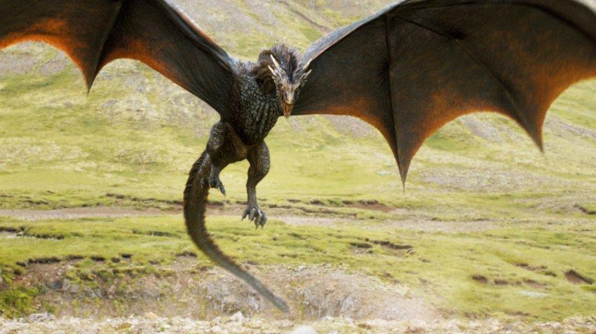 Характеристика и совместимость людей, родившихся в год Дракона