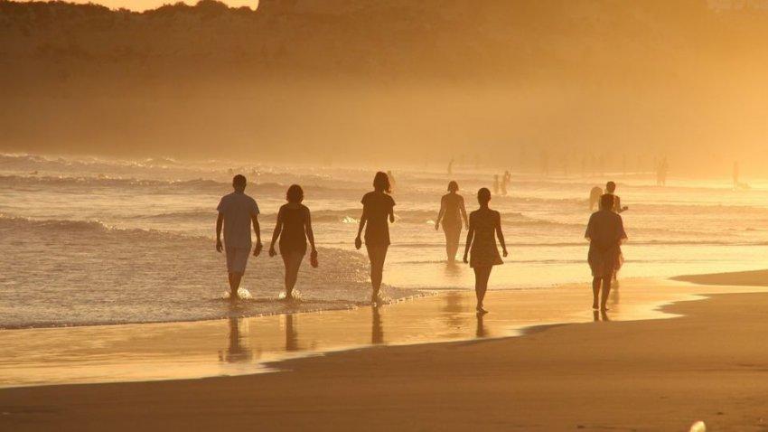Глобальное потепление может уничтожить человечество: к 2050 году на Земле будет смертельная жара