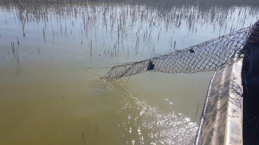 В период действия запрета на добычу камбалы-калкан пограничники изъяли у браконьеров почти тонну ценной рыбы