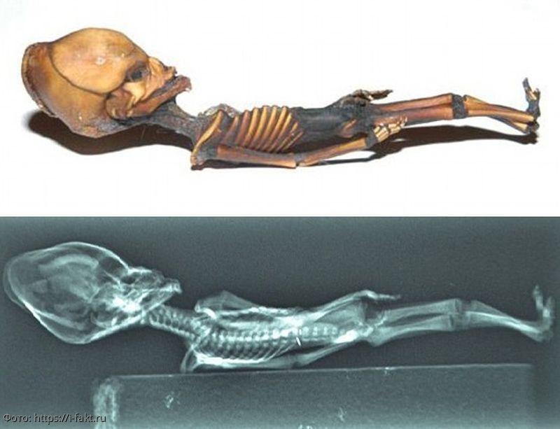Гуманоид Атакамы - загадочная мумия из американской пустыни