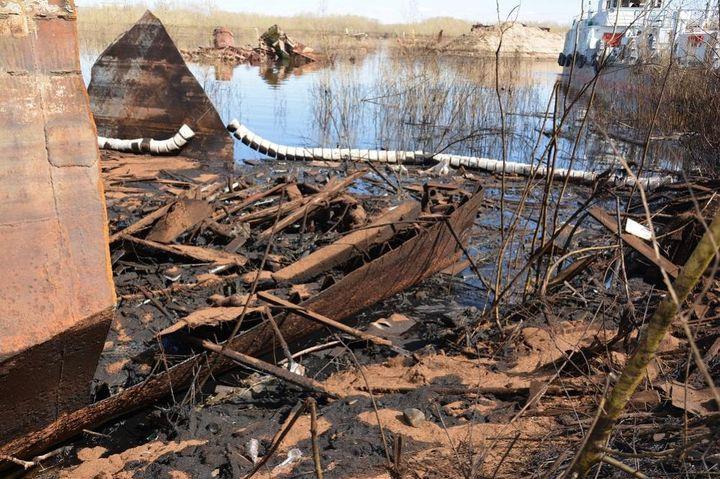 Экологические катастрофы в 2018 году в мире и в России