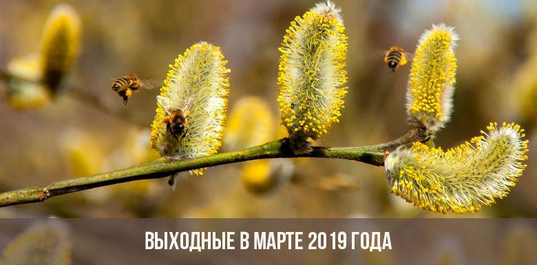 Как отдыхаем в марте 2019 году: выходные и праздничные дни