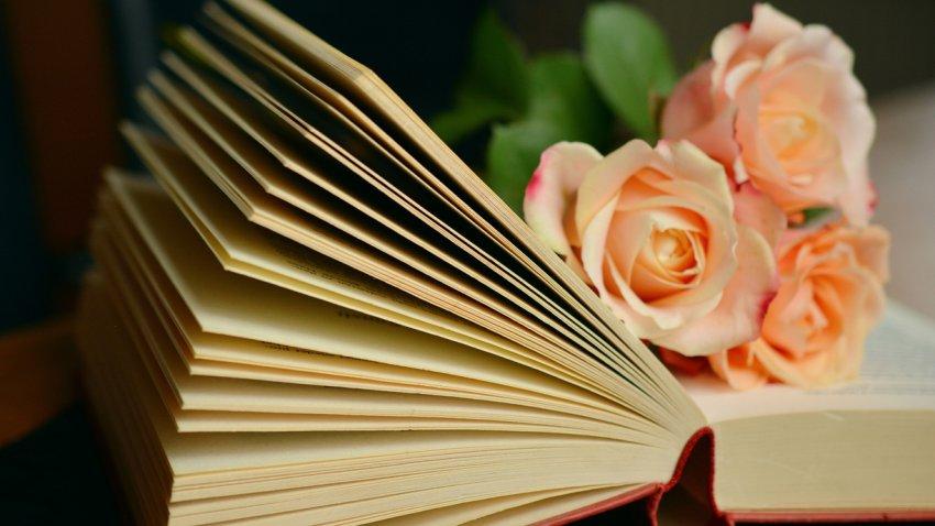 Тайны сердца: три сокровенных качества души каждого человека