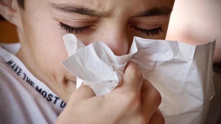 Люди из-за глобального потепления будут болеть гриппом круглый год