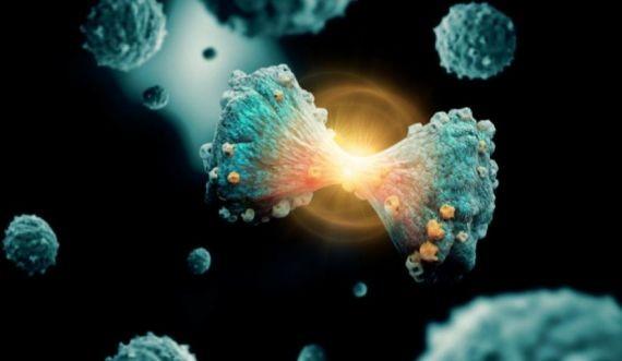 Ученые научились прогнозировать превращение здоровых клеток в раковые