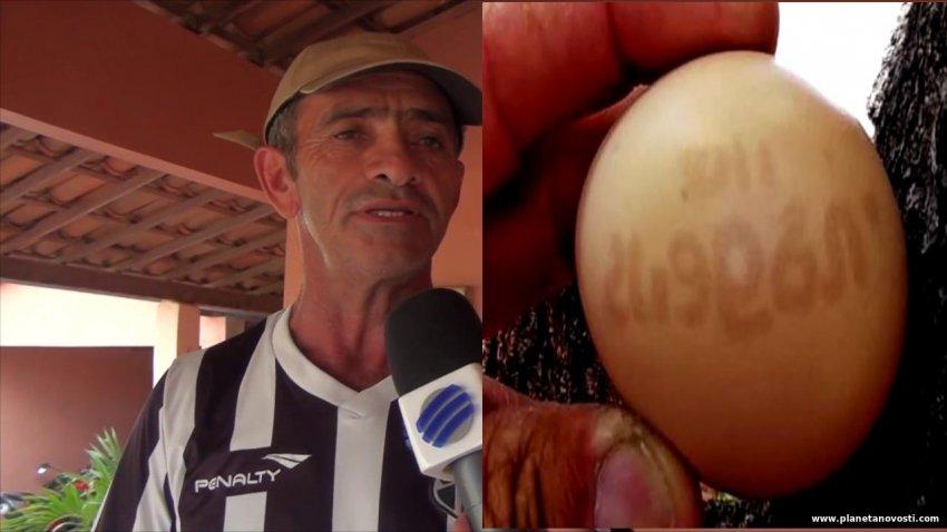 В Бразилии курица снесла яйцо с цифрами и символами