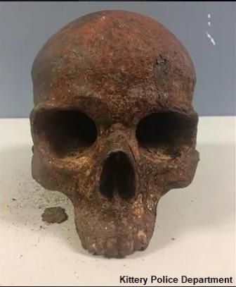 На пляже в США обнаружили загадочный металлический череп