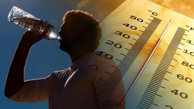 Ученые: длительное прямое попадание солнечного света на поверхность головы ухудшает двигательные и когнитивные функции
