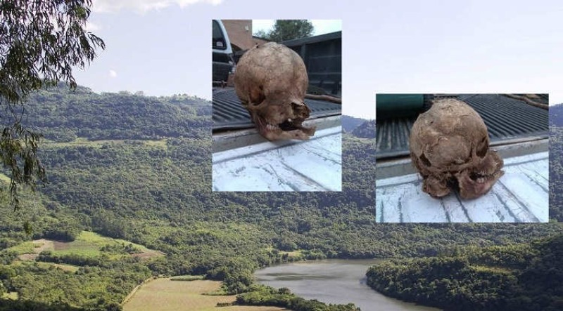 В Техасе на ранчо обнаружили череп гибрида теленка и человека