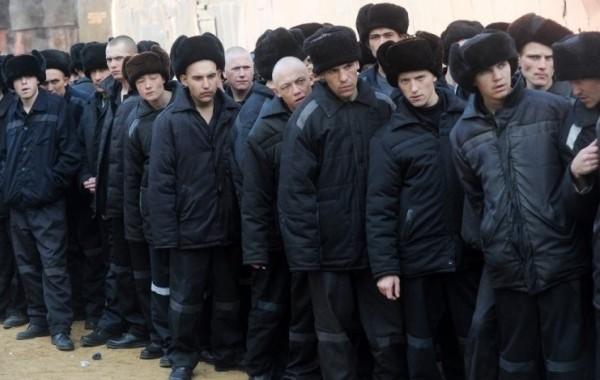 Амнистию в России предложили провести из-за пандемии