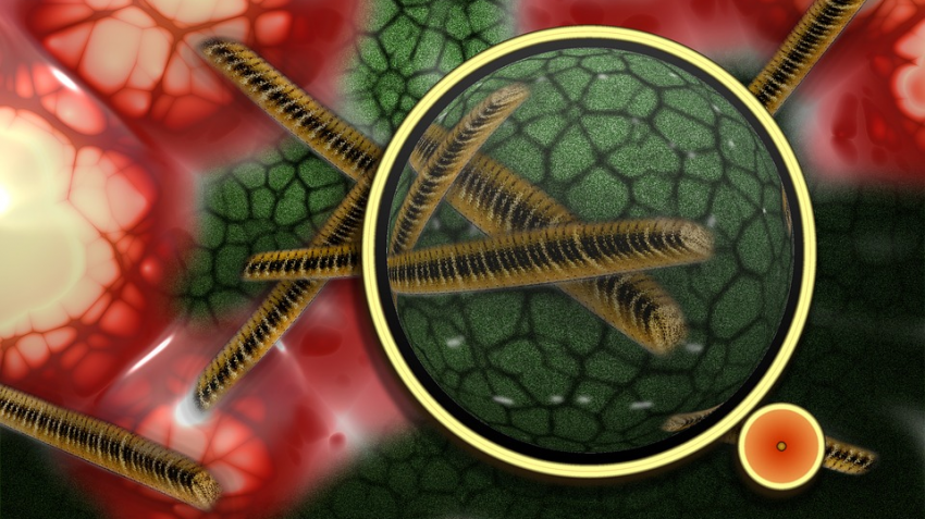 За полярным кругом просыпаются древние вирусы: назревают новые эпидемии
