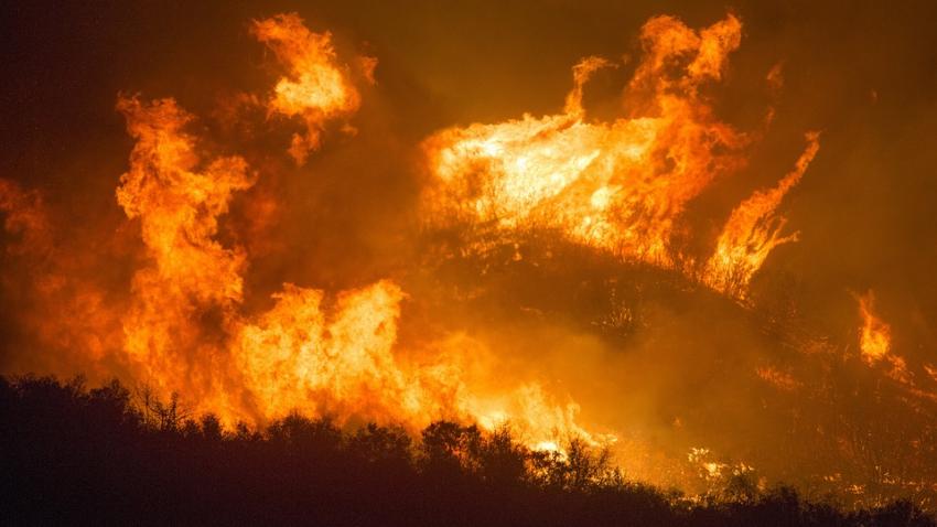 В Йеллоустоуне возле гейзера «Старый служака» полыхает сильный пожар