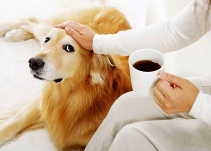 Куда можно использовать кофейную гущу после варки кофе для красоты и в хозяйстве?
