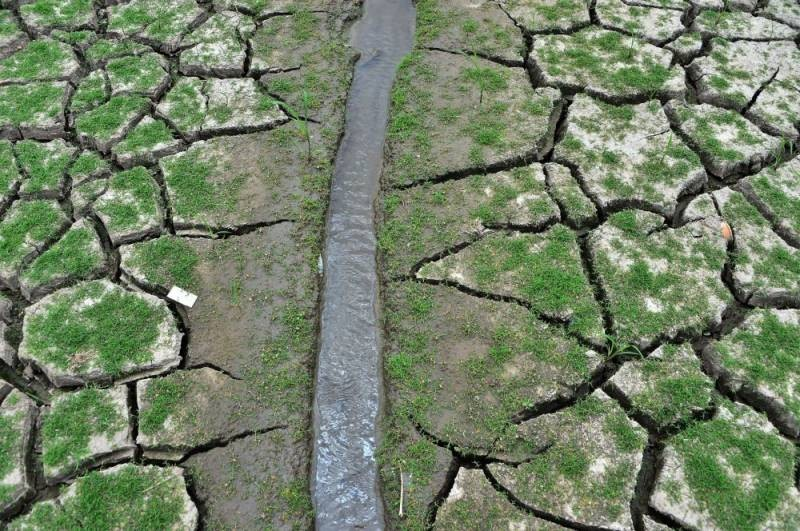 Как в СССР боролись с засухой 1972 года